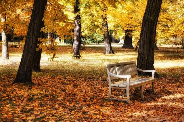 park na podzim